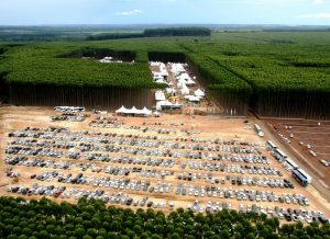 expoforest 2011- 3